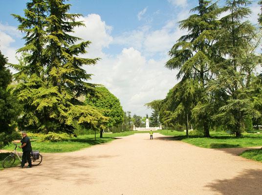 Park mitten in Mantua