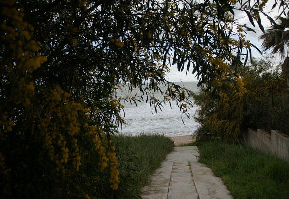 Wir laufen runter ans Meer.....