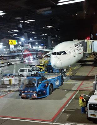 Unser Flieger der Aeromex steht in Amsterdam bereit