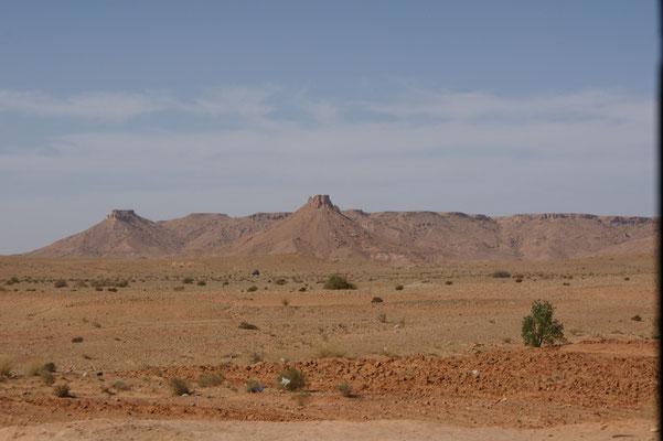 Steinwüste rechts der Oase