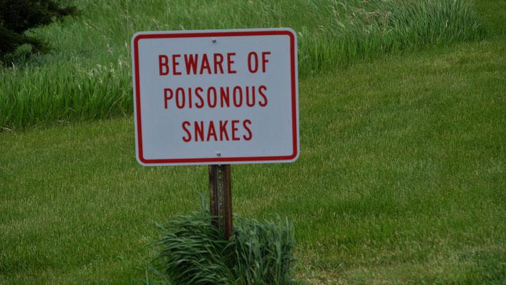 Achtung giftige Schlangen....