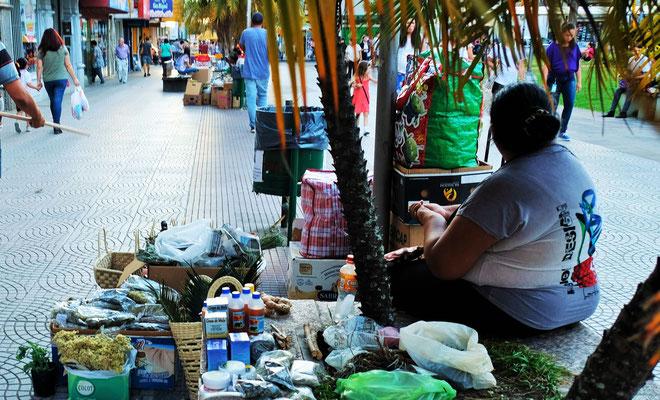 Unter jeder Palme hat eine Indianierin ihre Wundermittel zum Verkauf ausgebreitet.