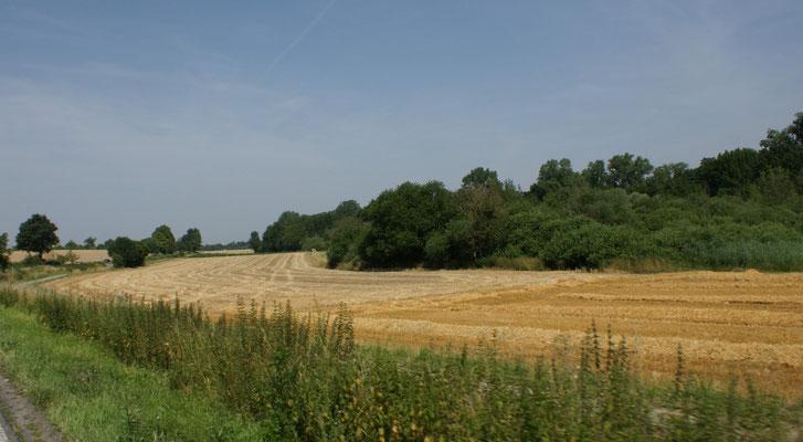 Viele Felder, abgeerntet oder kurz davor.