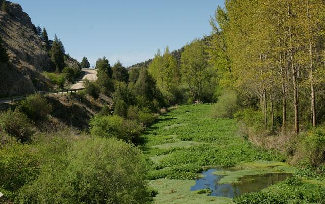 Wir fahren raus aus dem Canon del Rio Lobos