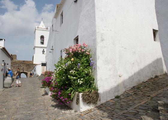 Dazwischen immer wieder Blumen an den Hausmauern von Monsaraz