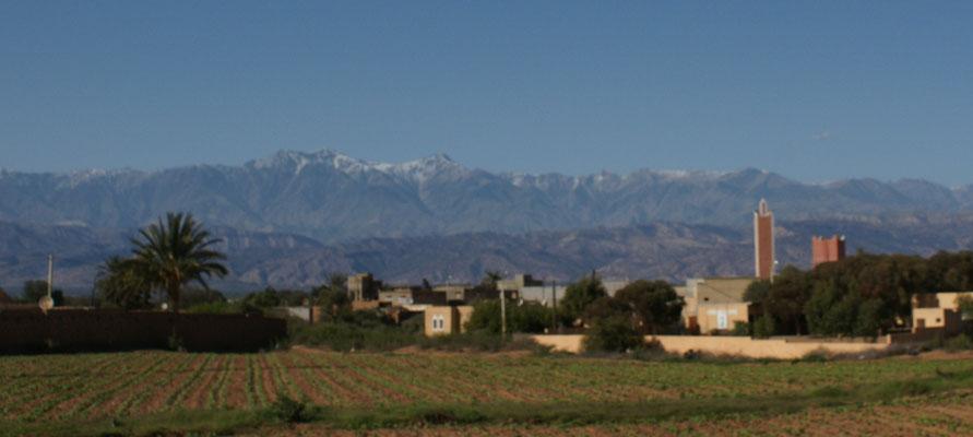 Im Hintergrund der schneebedeckte hohe Atlas
