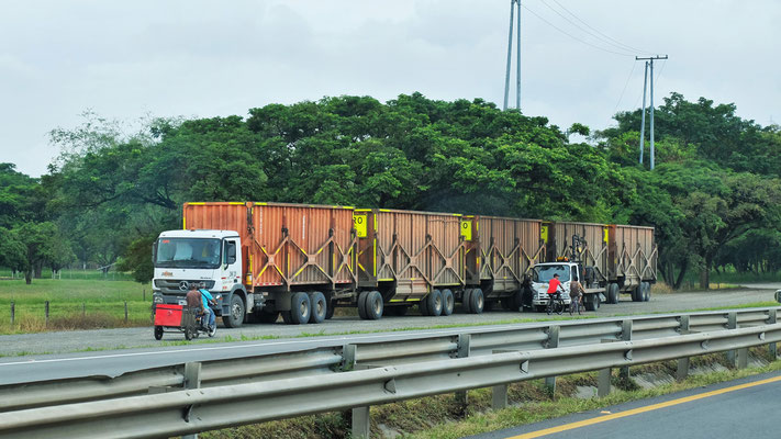 ..... langen Zuckerrohrkompositionen hin, die auf die Autopista einschwenken
