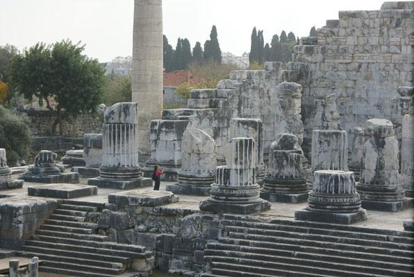 Wie die diese dicken Säulen wohl gestellt haben?