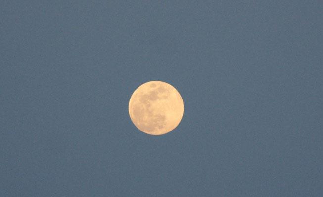 Der Mond ist aufgegangen am Mittelmeer in Marokko