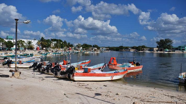 Am Fluss viele Fischerboote, die machen anscheinend gute Beute.