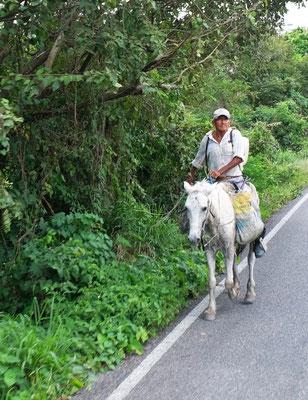 Der Gaucho auf dem Weg zu seinem Vieh