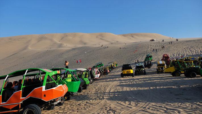 Dutzende Buggys buhlen um die Touristen