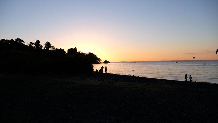 Eine kleine zugängliche Bucht am Lago Llanquihue für die Uebernachtung gefunden