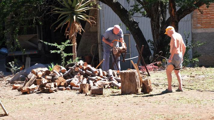 Die Wintergäste hacken Holz.....