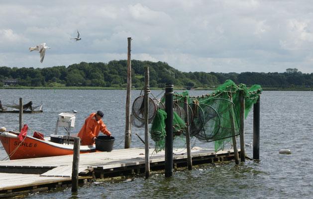Der Fischer hat wohl einen guten Fang gemacht. Die Möwen warten.
