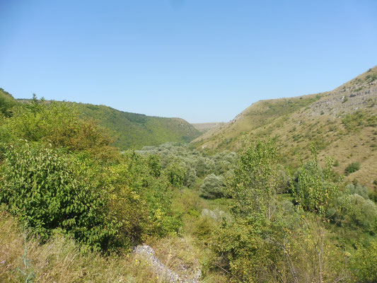 und nach hinten ins Tal