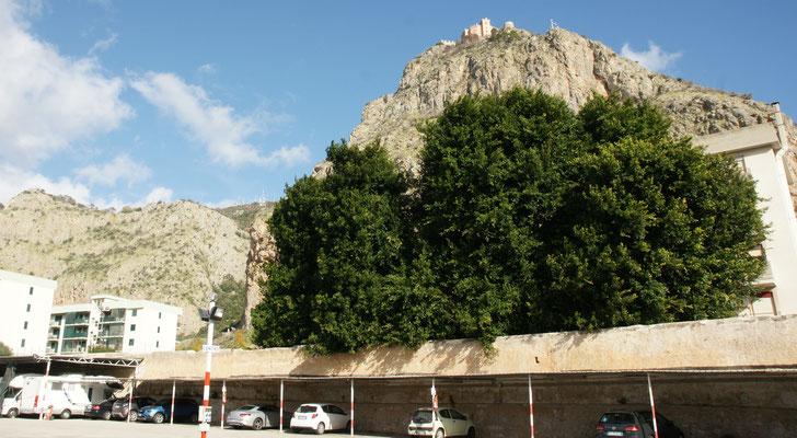 Unser Blick aus dem Camper auf dem Stellplatz in Palermo