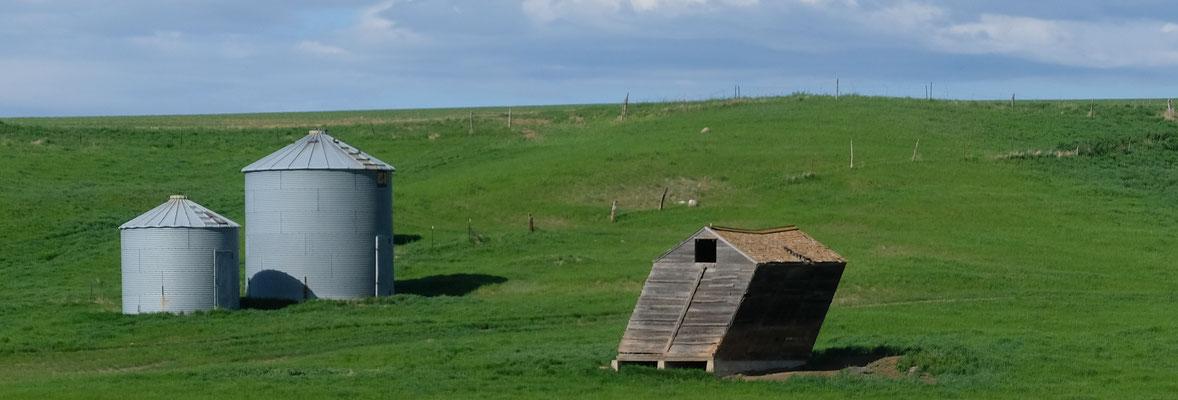Diese Hütte bietet wohl nicht mehr allzuviel Schutz