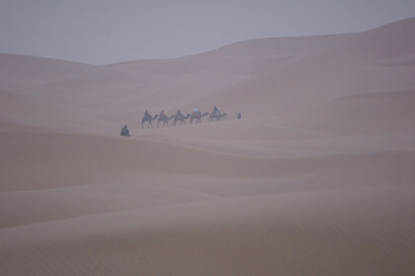 Trotz Sandsturm werden die Touristen in die Dünen gejagt