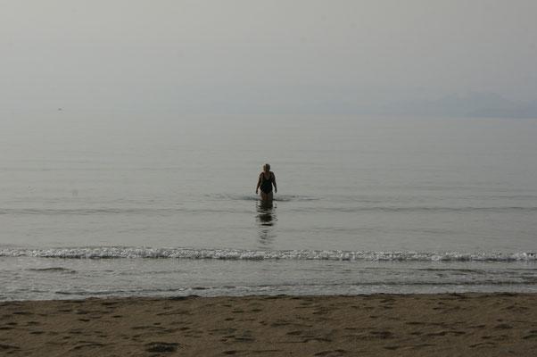 Die einzige Riesenschildkröte im Meer