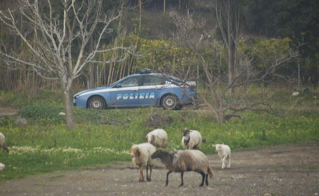 Die Polizei patroulliert an uns vorbei