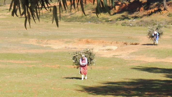 Auf dem Land und schon sind es wieder die Frauen die Schwerstarbeit für die Familie leisten