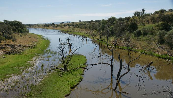 Flüsschen in der Region Elvas