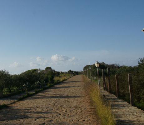 Die Holperdipolderstrasse zum Steinbruch von Cusa