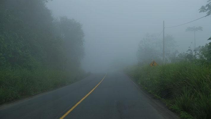 Zuerst mal wieder nur Nebel