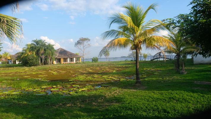 mit schöner Aussicht auf den See und Teich mit....