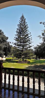 Der Park vor der Villa