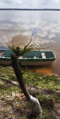 Pause an einer Lagune mit Krokodilen, die wir nicht zu Gesicht bekommen.