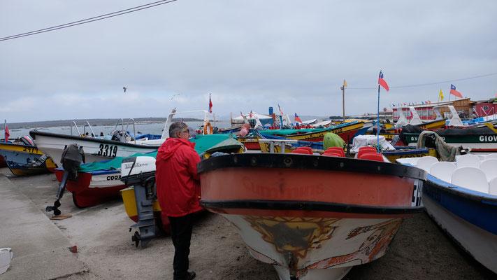 Wir sind in Punta Choros angekommen...