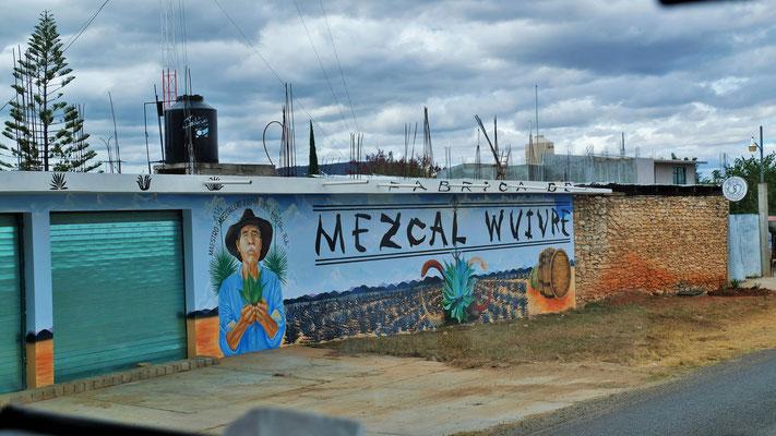Mezcal Gebiet
