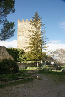 Der Pisanoturm