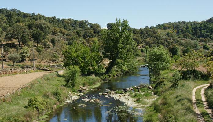Zwischen Guarda und Castelo Rodrigo