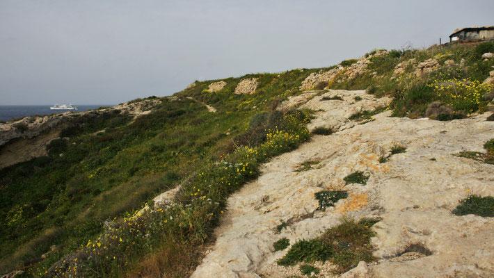 Der Wanderweg entlang der Küste Richtung Mgarr