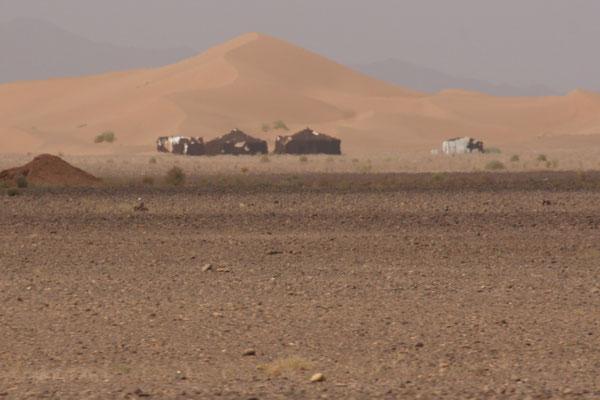 Biwacks für Touristen, idyllisch vor einer einzelnen Düne zwischen Zagora und M'hamid