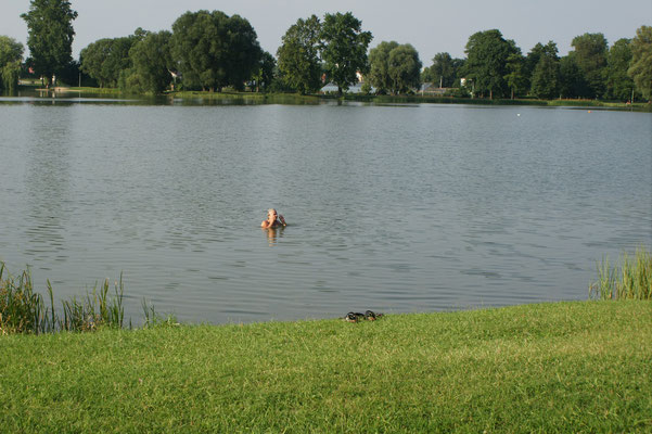 Schwuppediwupp und ich bin im Wasser