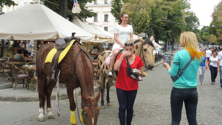 Die Pferde sind gefärbt in Odessa