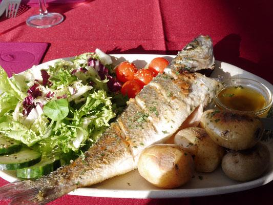 Lecker Fisch zum Mittagessen