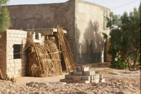 Wind und Sandschutz
