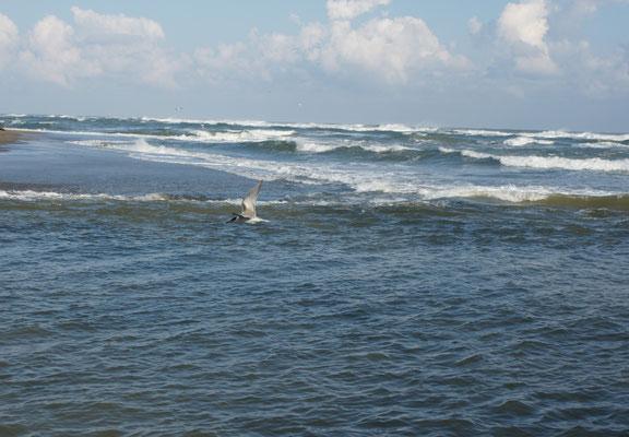 Das Meer hat sich noch nicht beruhigt.