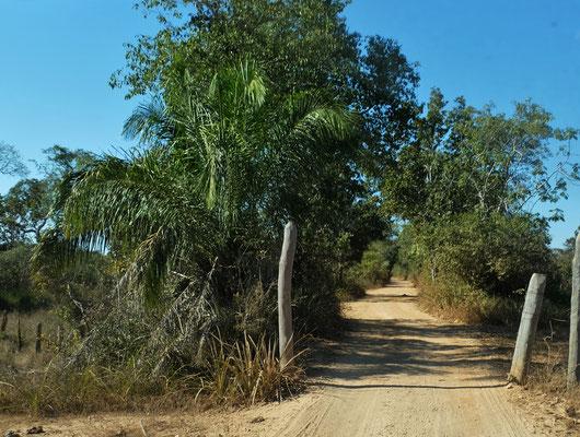 Einfahrt zur Pousada Rio Claro