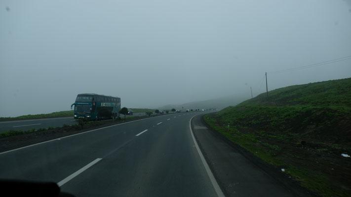 Im Nebel wird sogar die Wüste grün