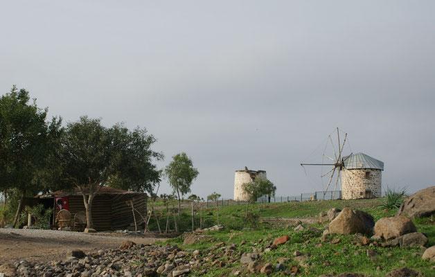 """Alois: """"Die Windmühlen könnten die auch mal restaurieren."""""""