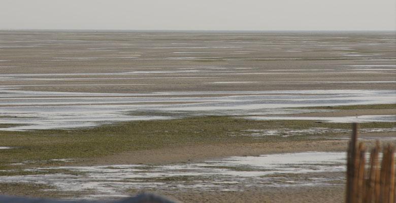 Ebbe am Rande der Lagune bei Dakhla