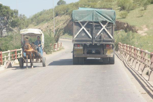 Verschiedene Pferdestärken