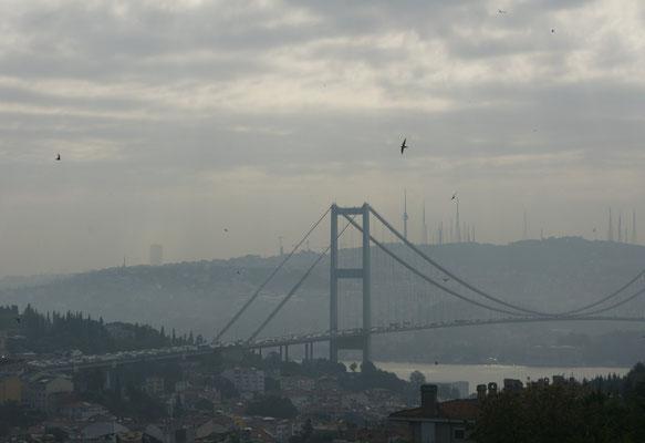 Jetzt nur noch die Brücke schaffen und wir sind in Asien