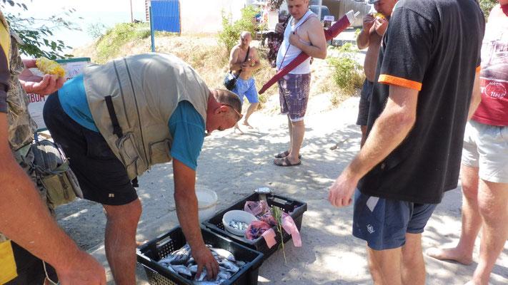 Die Fische in Lebevdika/ Ukraine werden sofort verkauft